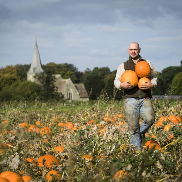 Tom Spilman harvest his crop at Spilman's Pumpkin Farm, near Thirsk in North Yorkshire. PRESS ASSOCIATION Photo. Picture date: Monday October 1, 2018. The farm has grown some 20,000 pumpkins and squashes of all different shapes and sizes, which are traditionally linked with Halloween, at the end of this month. Photo credit should read: Danny Lawson/PA Wire