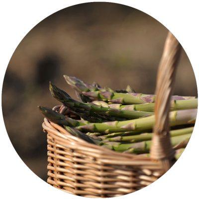 Pasture-Lane-Asparagus