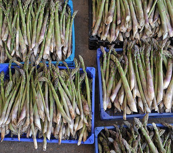 Asparagus for sale_Spilmans Farm