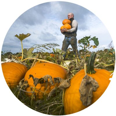 PYO-Pumpkins-Sessay_Thirsk