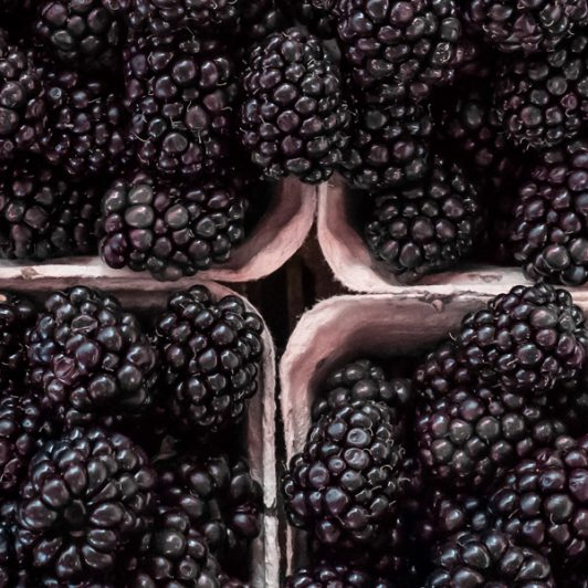 Blackberry-Punnets-Spilman-Farming