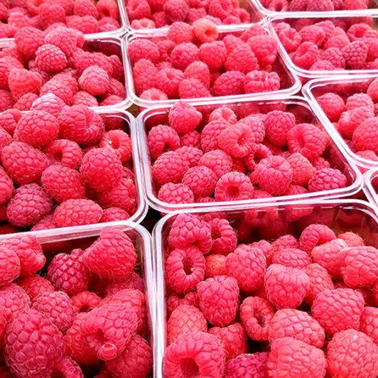 raspberries_Spilmans